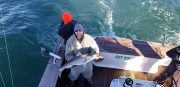 Fishing charters_14
