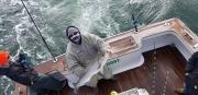 Fishing charters_15