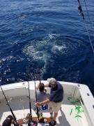 Fishing charters_11